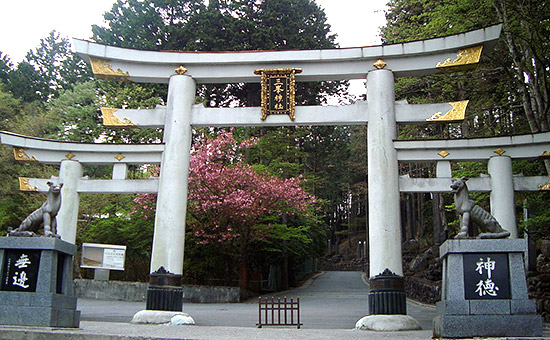三峯神社・オオカミ