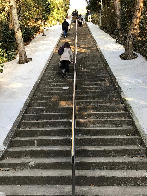洲崎神社の階段