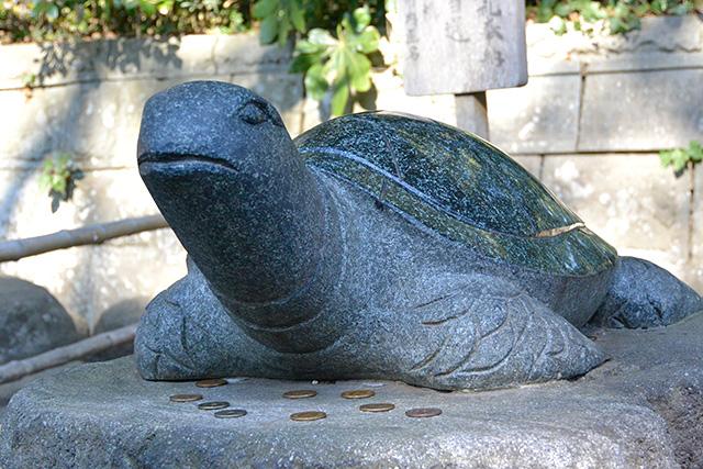 酒列磯前神社・幸運の亀