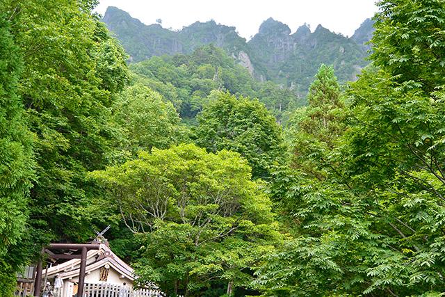戸隠神社・奥社から戸隠山を望む