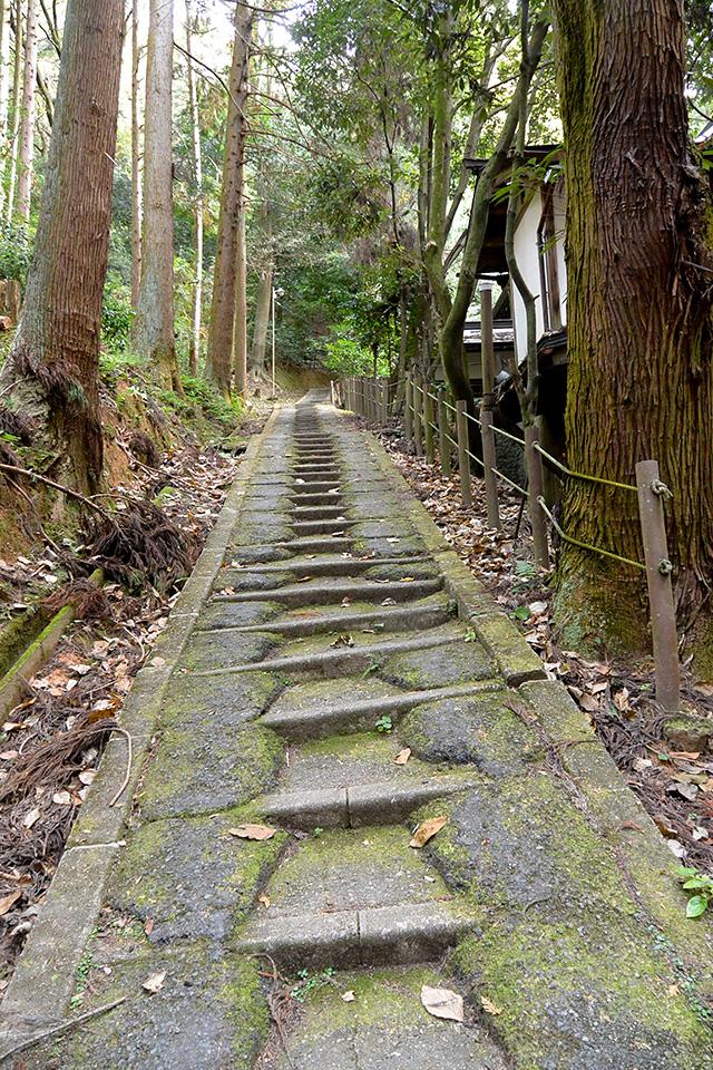 稲荷山への急な道