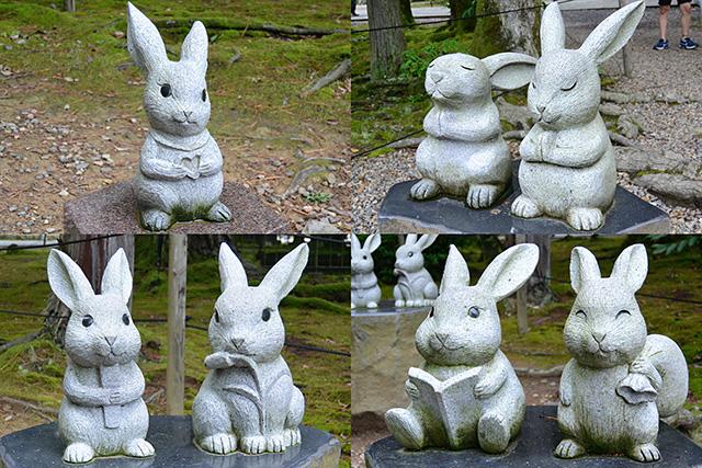 本殿に向いているウサギ