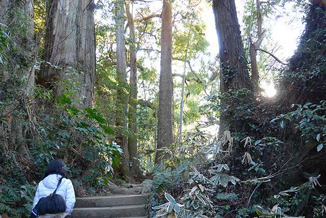 香取神宮・旧参道から要石へ