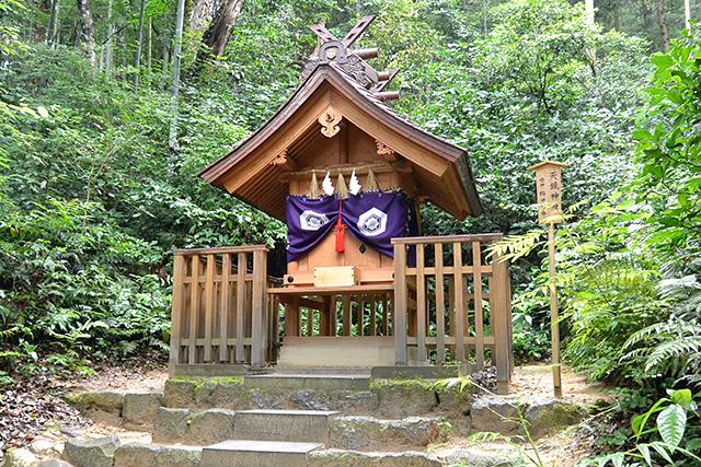佐久佐女の森 天鏡神社