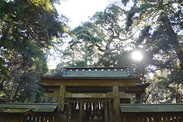 鹿島神宮・奥宮