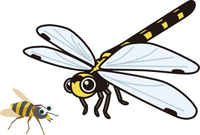 虻(あぶ)と蜻蛉(トンボ)