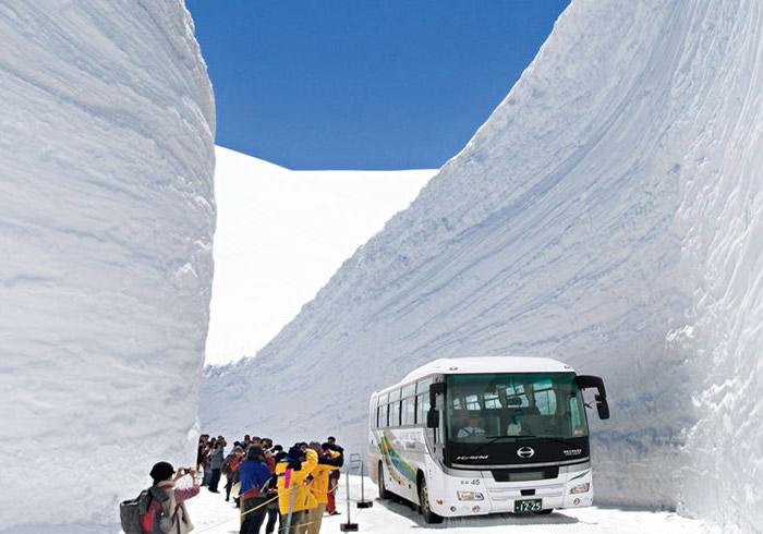 立山黒部アルペンルートバスツアー